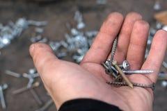 le viti di metallo differenti si trovano nella palma del lavoratore immagini stock libere da diritti