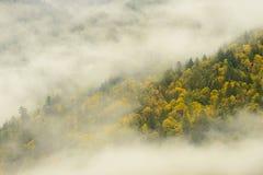 Le voile nuptiale tombe parc provincial dans brumeux, Canada Photographie stock libre de droits