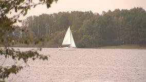 Le voilier blanc flotte sur la grande eau banque de vidéos