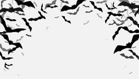 Le vol de Halloween manie la batte le fond de frontière Groupe rampant de flittermouse de silhouette d'isolement sur le blanc illustration de vecteur