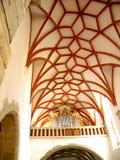 Le volte dentro Tartlau (Prejmer) hanno fortificato la chiesa Fotografia Stock