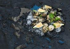Le vongole crude fresche con il limone, le erbe e le spezie sullo scheggiato su ghiacciano il contesto scuro della pietra dell'ar immagini stock