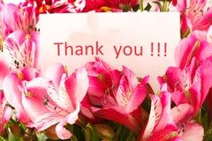 Le `vous remercient ` Photographie stock