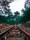 Le voyage intact photo libre de droits