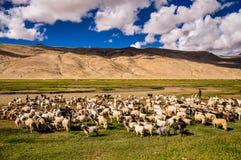 Le voyage par Leh Images stock