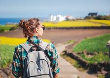 Le voyage vers l'?le de Jeju, Cor?e du Sud, une touriste de jeune fille marche sur le fond du champ de floraison photographie stock libre de droits