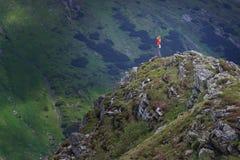 Le voyageur d'homme sur le sommet de montagne appréciant des mains de vue aérienne augmentées au-dessus du concept de succès de m photographie stock libre de droits