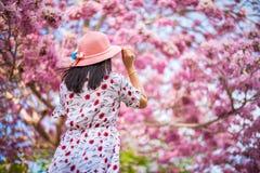 Le voyageur de femme reculant avec les fleurs de trompette roses photographie stock