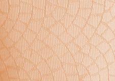 Le wale coloré, modèle de tissu de texture de taie d'oreiller peut employer As Photos stock
