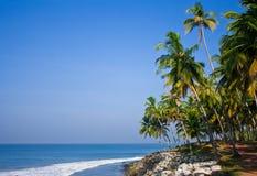 Le whise de plage de Varkala lapide la paume et les arbres un jour ensoleillé Image libre de droits