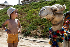 Le whisperer de chameau Photos libres de droits