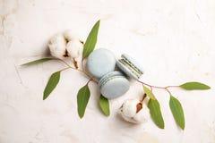 Le whith français de buiscits de macarons de myrtille fleurit sur le fond en bois Photographie stock