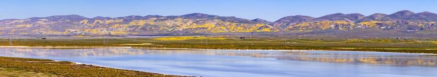 Le Wildflower a couvert des montagnes reflétées dans les eaux provisoires monument national de plaine soda de lac, Carrizo, la Ca photos stock