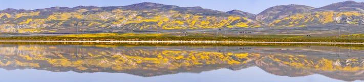 Le Wildflower a couvert des montagnes reflétées dans les eaux provisoires monument national de plaine soda de lac, Carrizo, la Ca photographie stock