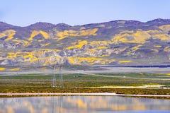 Le Wildflower a couvert des montagnes refl?t?es dans les eaux provisoires monument national de plaine soda de lac, Carrizo, la Ca images stock