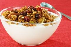 Le yaourt a complété avec la granola organique images libres de droits