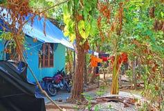 Le yard de la maison Inde du sud Images libres de droits