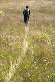 Le yclist de ¡ de Ð monte par le pré avec l'herbe jaunie non coupée Images stock