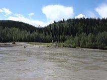 Le Yukon puissant pendant le printemps clips vidéos