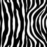 Le zèbre barre le modèle sans couture blanc noir Photo libre de droits