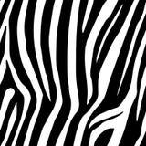 Le zèbre barre le modèle sans couture Copie de zèbre, peau d'animal, rayures de tigre, modèle abstrait, ligne fond, tissu Main ét illustration stock