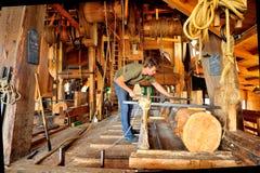 Le Zaanse Schans Moulin à vent les jeunes moutons Photographie stock libre de droits