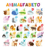 Le zoo mignon de bande dessinée a illustré l'alphabet avec les animaux drôles Alphabet espagnol illustration libre de droits