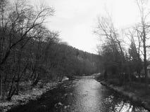 Le Zschopau dans l'Erzgebirge en Saxe, Allemagne image libre de droits
