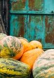Le zucche arancio sul cortile concludono il bello acquamarina hanno arrugginito parete Fotografie Stock