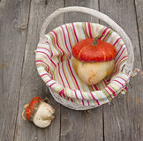 Le zucche decorative è in un canestro Fotografia Stock