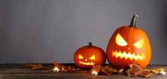 Le zucche di Halloween ed asciugano le foglie fotografie stock libere da diritti