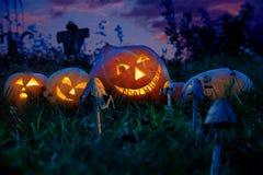 Le zucche di Halloween si trovano su un giacimento della zucca alla notte con gli occhi delle ore degli ingranaggi Immagine Stock Libera da Diritti