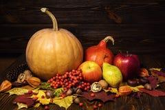 Le zucche raccolte con le foglie di caduta e l'autunno fruttificano, regali della a Fotografia Stock