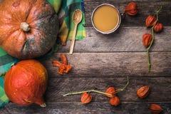 Le zucche rustiche di stile, la minestra e la ciliegia a terra si ramifica su legno Immagini Stock Libere da Diritti