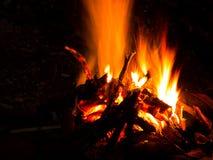 Leña ardiente de la hoguera en fuego del campo de la noche en la llama del bosque de la hoguera que hace caliente en invierno Imagen de archivo