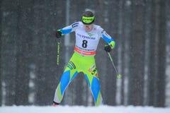 Lea Einfalt - Cross Country-Skifahren Stockbild