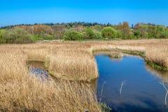 Lea-rivier dichtbij Londen stock afbeelding