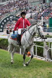 Lead Horse at Sha Tin Racecourse, Hong Kong Royalty Free Stock Photography
