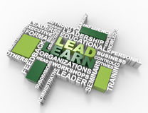 Lead Learn 3d wordclouds. Isolated on white background Royalty Free Stock Photos