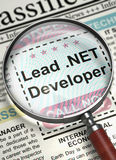 Lead .NET Developer Join Our Team. 3D. Royalty Free Stock Images