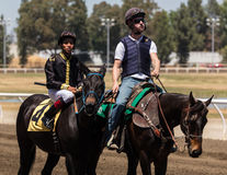Lead Pony and Race Horse Royalty Free Stock Images