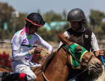 Lead Pony and Race Horse Stock Images
