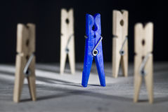 The leader. A blue plastic clothespin between some more out of focus and made of wood to reflect some different concepts stock image