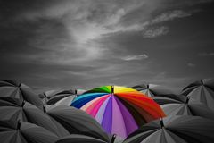 Leader concept. Rainbow umbrella are in a black umbrellas Royalty Free Stock Image