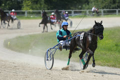 Leader during harness racing Stock Photo