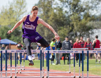 Leader in the High Hurdles Stock Images