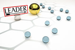 Leader Stock Images