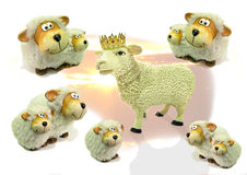 Leader of the pack sheep. Composition photo of leader of the pack sheep wearing a golden crown with other sheep looking up to leader Royalty Free Stock Image