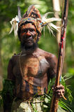 The Leader of a Papuan tribe of Yafi Stock Images