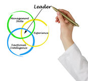 Leader qualities Stock Photos
